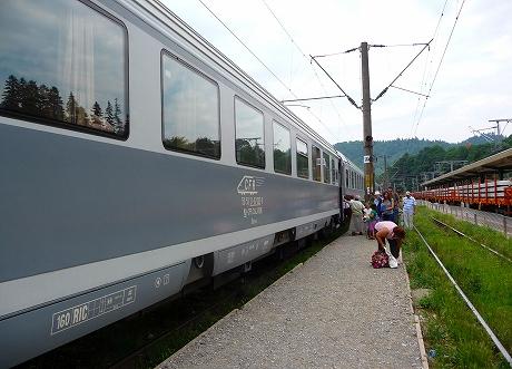 P1240049-1.jpg