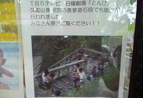 P1350088-1.jpg